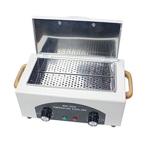 Electric high temperature sterilizer