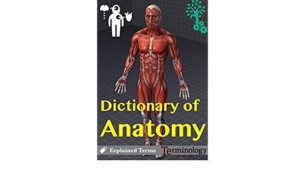 Dictionary of Anatomy Terms - Kindle edition by Engineering ...