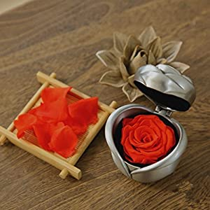 Rocoye Handmade Preserved Flower Rose, Never Withered Roses, Upscale Immortal Flowers,Gifts For Women,Her,Girls,Sister, Mother's Day,Valentine's Day, Anniversary, Birthday,Wedding -Red Rose 3