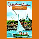 Summer Begins: The Callahan Cousins, Book 1 Audiobook by Elizabeth Doyle Carey Narrated by Stina Nielsen