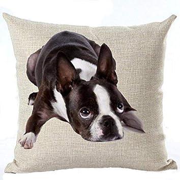 Amazon.com: Lino y Algodón Cute Funny diversos Pet Perros ...