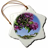 3dRose orn_190247_1 Usa, Michigan, Mackinac Island. Lilac Tree with Fort Mackinac. Snowflake Ornament, Porcelain, 3-Inch