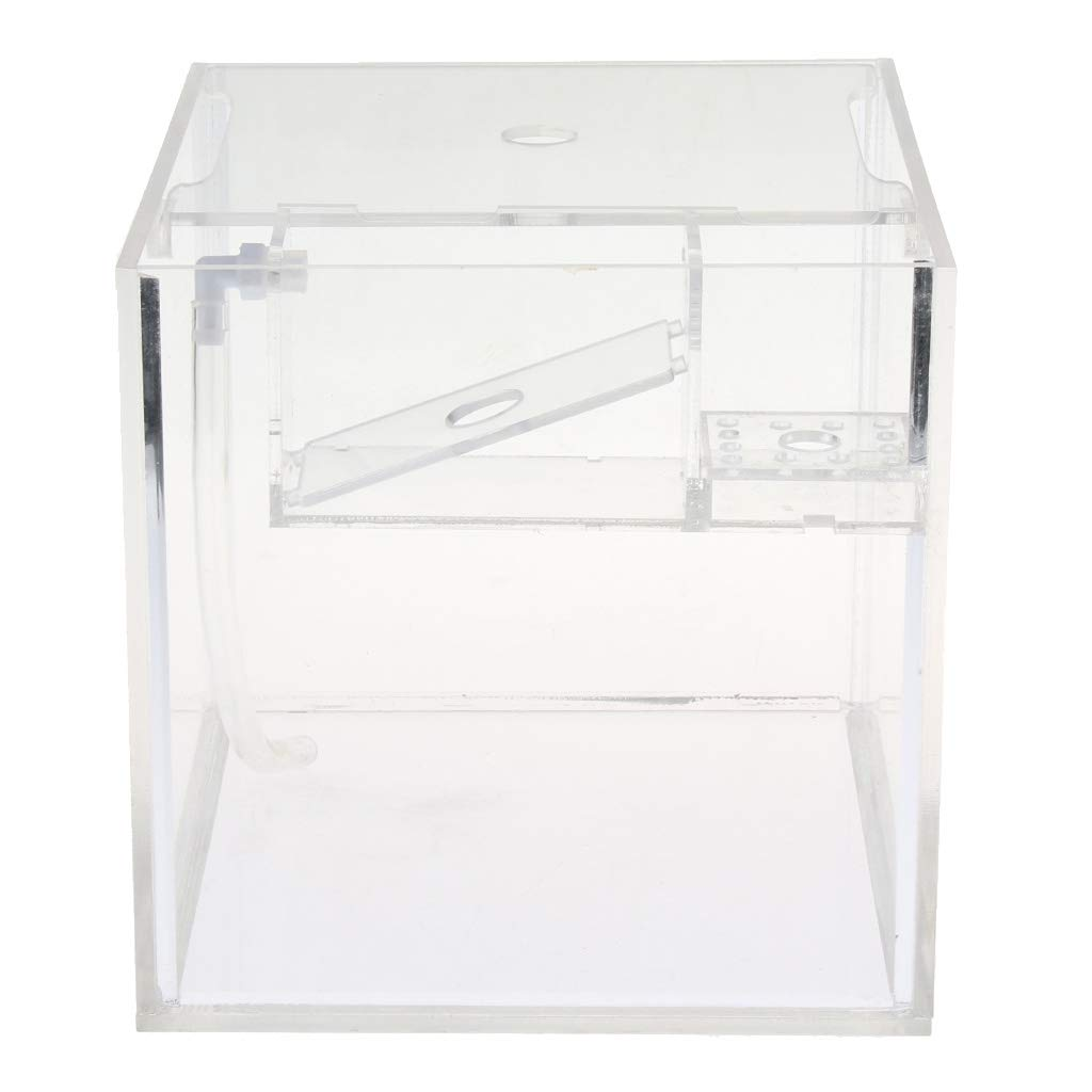 D DOLITY Fish Breeding Incubator Fish Hatchery Isolation Box for Aquarium Accessory