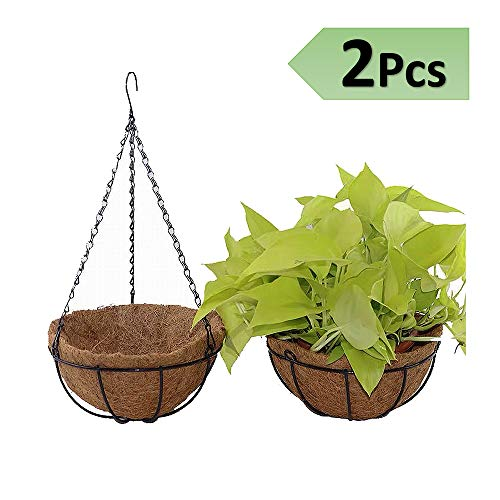 8 Inch Coconut Husk Planter Hanging Plant Basket Decorative Flower Pots Holder with Coco Coir Liner for Indoor Outdoor Garden Porch and Balcony
