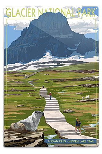 Lantern Press Glacier National Park, Montana - Logan Pass (12x18 Aluminum Wall Sign, Wall Decor Ready to