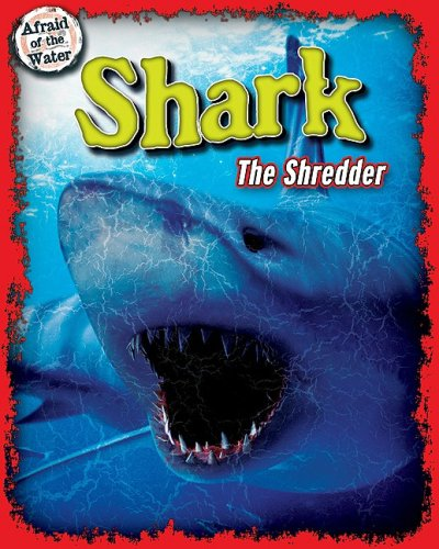 shredder shark - 1