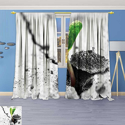 (SOCOMIMI Thermal Insulated Window Curtains concept ris sprout on dry ground Set of Two Panels 84W x 72L Inch)