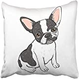 Throw Pillow Cover Polyester 18x18 Inch Decorative Black Dog of Cute Cartoon French Bulldog White Adorable Animal Breed Canine Character Deco Cushion Pillowcase Print Sofa Home