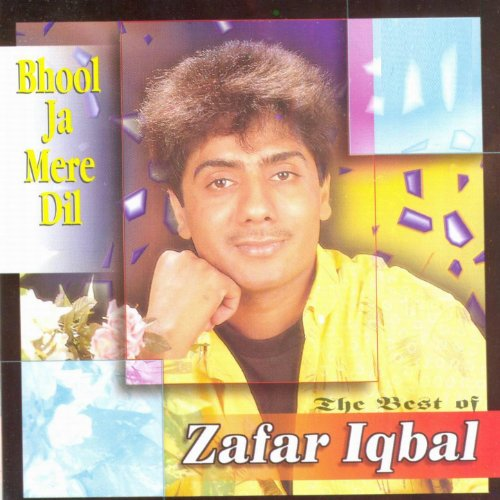 Bhool Ja Mere Dil (Best Of)