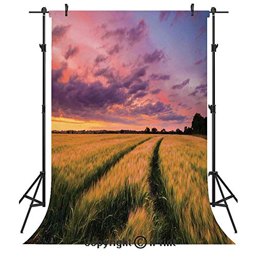 Farm House Decor Photography Backdrops,Flowing Crop at Sunset Morning in Nature Countryside Style Cloudscape Scene Print,Birthday Party Seamless Photo Studio Booth Background Banner 6x9ft,Yellow Green