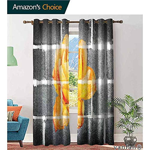LQQBSTORAGE Rustic Flower,Curtains Printed,Trippy Modern Graffiti with Rose Petals On The Brick Wall Urban City Life,Blackout Thermal Insulatedgrommet Curtain Panel Set of 2,Grey - Cottage Petal Rose New