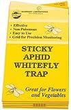 Hydrofarm HGSLWFT 5 Count Sticky White Fly Trap
