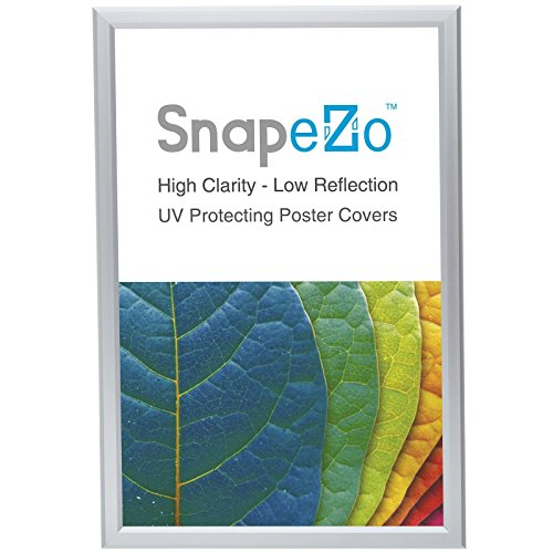 Silver Poster Frame - SnapeZo Poster Frame 22x28 Inches, Silver 1.25