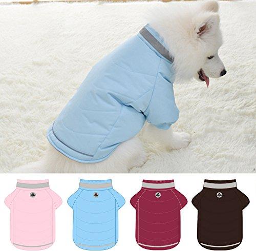 Chaqueta Abrigo Lana de Mascotas Forrada Prenda de Ropa para Perros (AZUL, XL): Amazon.es: Hogar