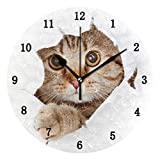 ZZKKO Cute Animal Cat Wall Clock, Silent Non Ticking Battery Operated Easy to Read Decorative Wall Clock for Kitchen Bedroom Bathroom Living Room Classroom