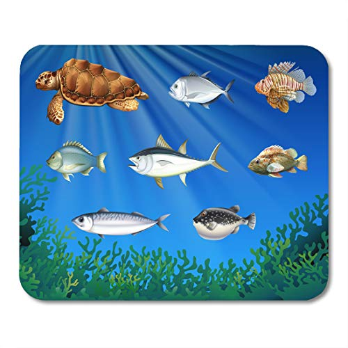 Emvency Mouse Pads Clip Animal Fish and Sea Turtle Under The Aqauatic Mouse Pad for notebooks, Desktop Computers mats 9.5