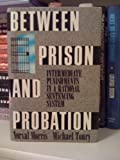 Between Prison and Probation, Norval Morris and Michael H. Tonry, 019506108X