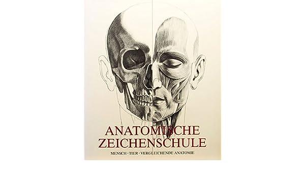 ANATOMISCHE ZEICHENSCHULE: MENSCH. TIER. VERGLEICHENDE ANATOMIE ...