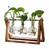 Plant Terrarium with Wooden Stand, Air Planter Bulb Glass Vase Metal Swivel Holder Retro Tabletop for Hydroponics Home Garden Office Decoration - 3 Bulb Vase
