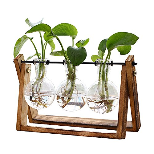 (Plant Terrarium with Wooden Stand, Air Planter Bulb Glass Vase Metal Swivel Holder Retro Tabletop for Hydroponics Home Garden Office Decoration - 3 Bulb Vase (Plant Terrarium))