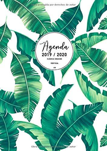 Agenda Clásica Grande 2019 2020: Agenda 2019/2020 Semana ...