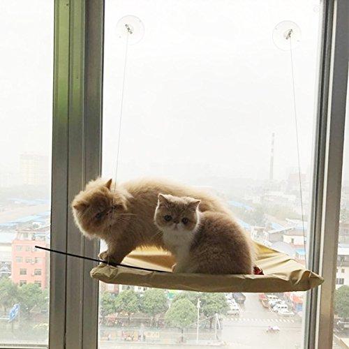 SRY- Prodotti per animali Amaca di gatto di finestra semplice della tazza di aspirazione, formato  55 x 35cm Carino e pratico