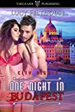 One Night in Budapest: City Nights Series: #20