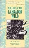 The Lure of the Labrador Wild, Dillon Wallace, 0930031296