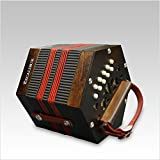 Excalibur Vivo Bellezza V-1W Italian Concertina - Walnut Satin