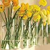 Siyaglass Pack of 4 Crystal Glass Wall Hanging Flower Vase Planter Terrarium Container Flower Pot