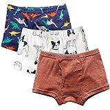 Color Culture Boy's Boxer Briefs Comfortable Cotton Short Toddler Underwear Set