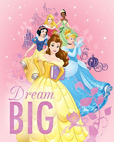 Disney Princesses Dream Big Iridescent Glitter Embellished Canvas 11W x 14H x 1.25D (Wall Canvas Princess Hanging)