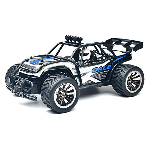 Putars RC Cars 1:16 Scale 2WD Off Road Cars 2.4GHz Radio Truck High Speed Challenger