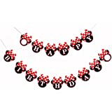 Red Minnie Happy Birthday Banner, Mini Mouse Style Party Decorations, Party Supplies, Baby
