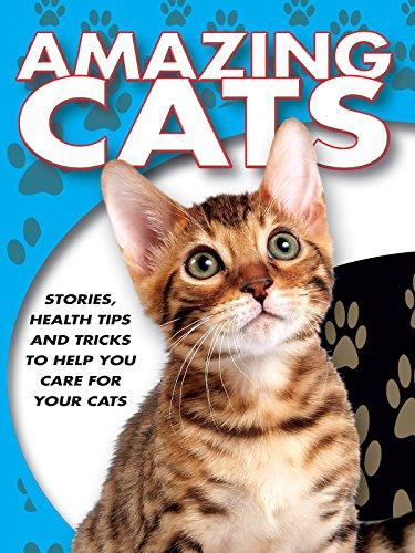 - Amazing Cats