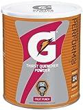 Gatorade - Fruit Punch Powder - New Value Pack Size 102-oz. Gatorade-g7