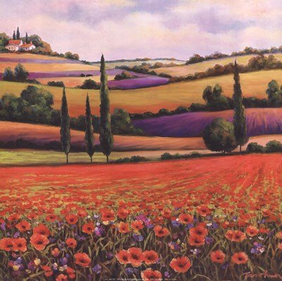 (Fields of Poppies I by T.C. Chiu - 12x12 Inches - Art Print Poster )
