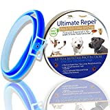 Pet Flea and Tick Collar – Dogs and Puppies Natural Adjustable Waterproof Prevention up to 6 Month Protection Essential Oils Blue 25 Inches Pest Control Fits Small, Medium and Large by Ultimate Repel