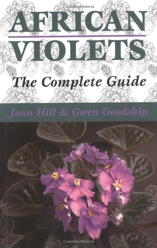 african-violets-the-complete-guide
