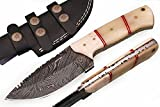 SharpWorld Beautiful Damascus Knife Made of Remarkable Damascus Steel and Exotic Handle -Best Hunting Knife with Sheath TJ102