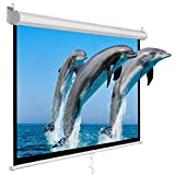 Super Deal 100'' Projector Screen Projection Screen Manual Pull Down HD Screen 16:9 for Home Cinema Theater Presentation Education Outdoor Indoor Public Display