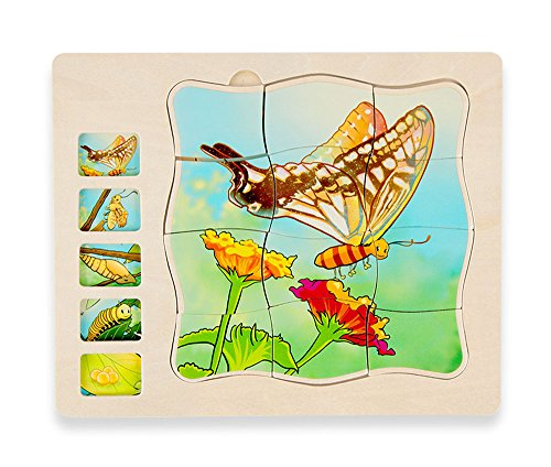Wooden 5 Layers Butterfly Life Cycle Puzzle for Toddlers