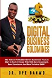 img - for Digital Business Goldmines: The Hottest Profitable Internet Businesses You Can Start In Next 24 Hours With Zero Investment, Zero Experience, And Zero Technical Skills book / textbook / text book