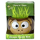 Buzzy Grow Kits Jungle Animal - Monkey