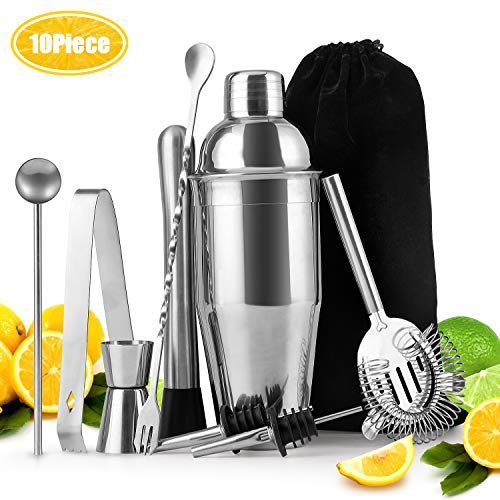 25oz Stainless Steel Cocktail Shaker Bar Set Tools Martini Shaker/Cocktail Filter/Double Measuring Jigger/Strainer/Liquor Pour/Mixing Spoon/Muddler and Ice Tongs Professional Bar Accessories-10 Piece