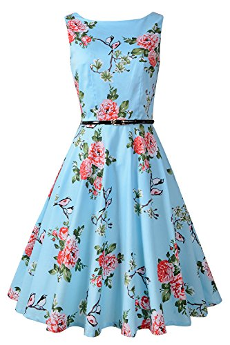 Chicanary Women's Floral 1950s Rockabilly Cotton Vintage Dress (XX-Large, Blue Floral)