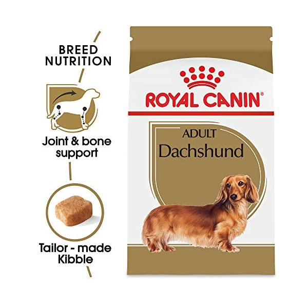 Royal Canin Dachshund Adult Breed Specific Dry Dog Food, 10 lb. bag