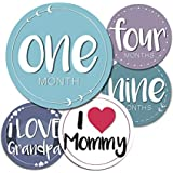 Baby Monthly Milestone Stickers - 24 Adorable Stickers...