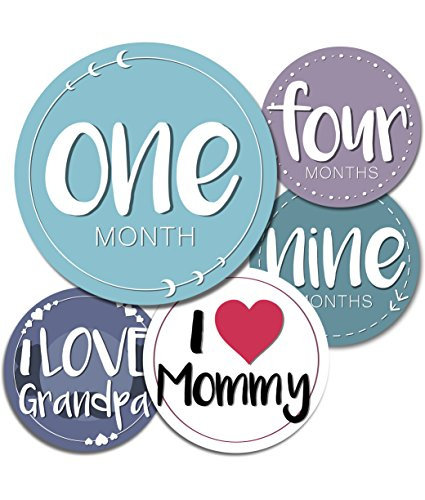 (Baby Monthly Milestone Stickers - 24 Adorable Belly Stickers for Boys or Girls in Their First Year. Capture Loving Memories for a Scrapbook or Track Their Achievements from 1-12 Months)