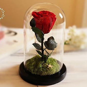 Fleur Rose Eternelle Boite Cadeau Avec Couvercle En Verre Saint